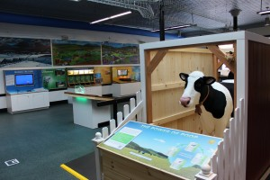 Electra, a 7' long, talking cow built by the Imagination Company in Bethel, is the centerpiece of a Cow Power exhibit at the EIC. Photo courtesy of Green Mountain Power