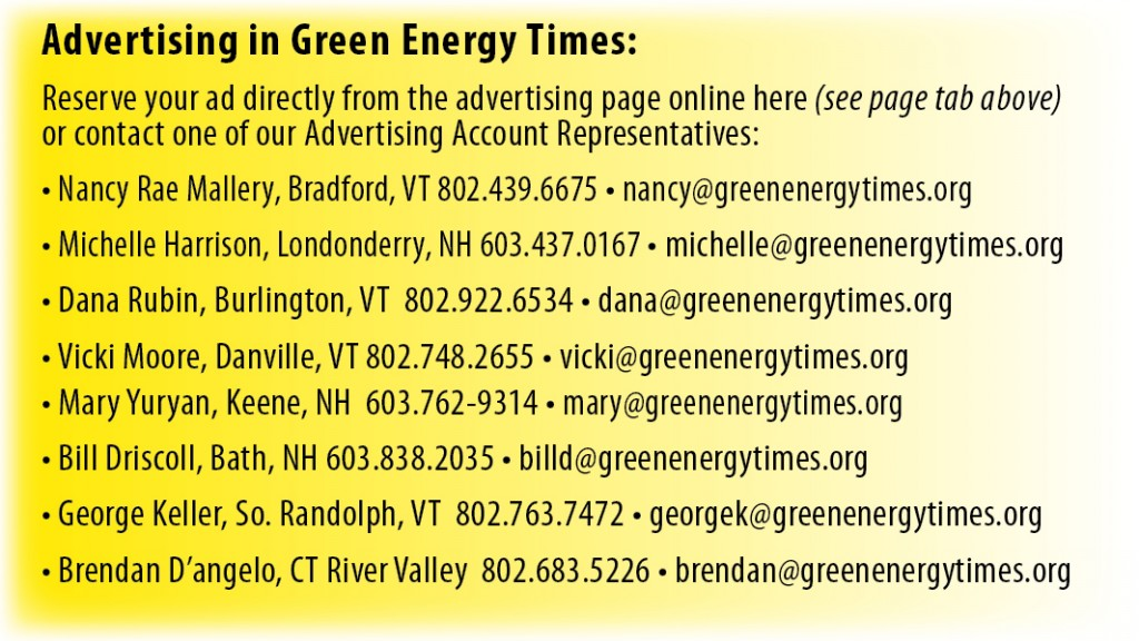 Advertising in Green Energy Times