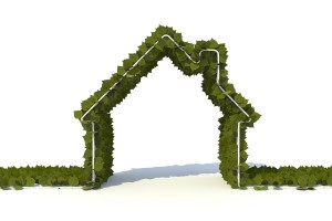There has never been a better time to renovate green, given the abundance of Earth-friendly building material choices as well as contractors well-versed in energy- and resource-efficiency. Photo: Stockmonkeys.com
