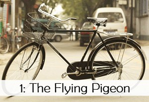 flying-pigeon