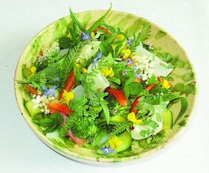 A salad of cooked vegetables with flowers. Photo by Yelkrokoyade. GNU Free Documentation License Wikimedia Commons.