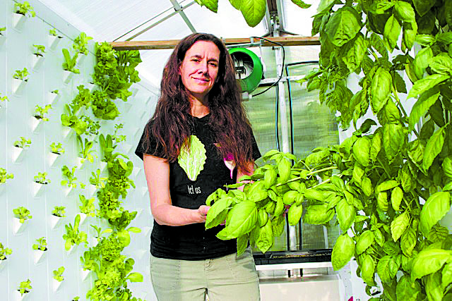 AERO Mobil garden is designed to bring a fresh harvest of vegetables, herbs, and fruits to the kitchen from the convenience of a patio or porch