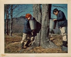 It's sugaring season in Vermont. Photo Flickr, By Deborah Lundbech