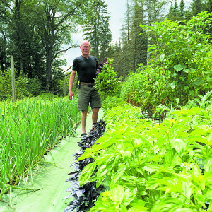 The founder of GardenMats, Peter Comart, proudly stands in his own weed-free garden that has produced a bountiful garden paradise. Courtesy photo