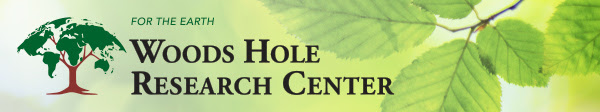 woods-hole-research-center