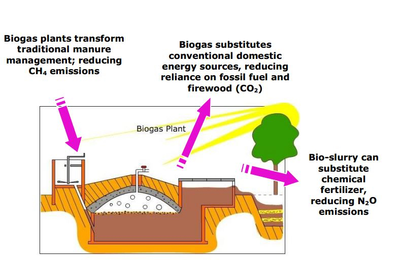 source: www.sswm.info