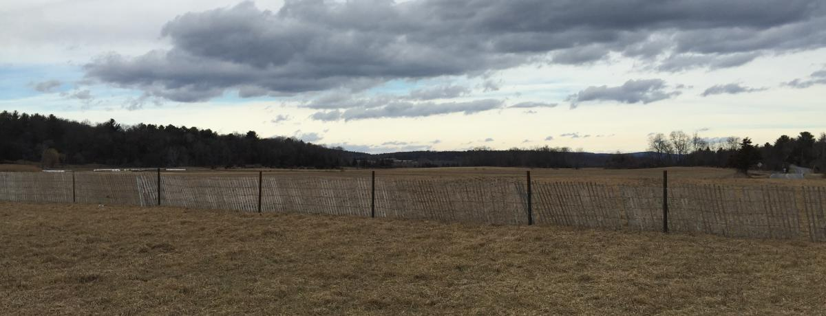 Hecate Energy is developing a 20 MW solar PV project in Greene County, NY. Photo: Hecate Energy.