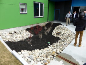 """Upper """"water garden"""" stage of the multi-level storm water drainage system. Courtesy photos."""