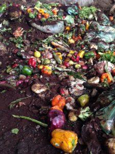 Food scraps in a heap. Photo: Clare Innes.