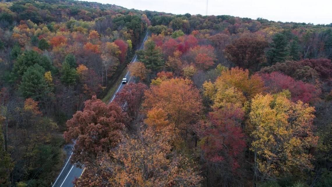Fall colors in Pennsylvania (David Mckeown | AP)