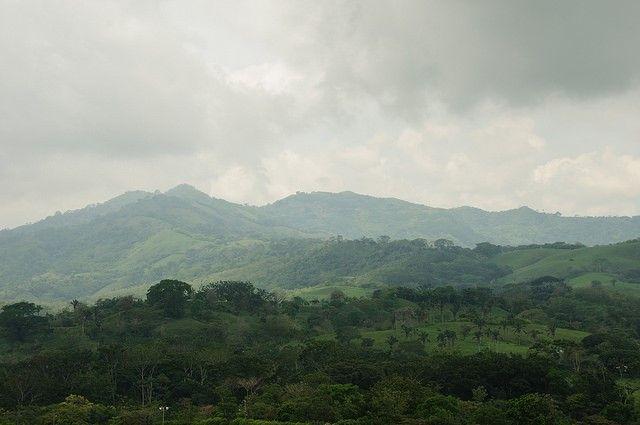 Restored forest in Costa Rica (Photo: Aaron Minnick | WRI)
