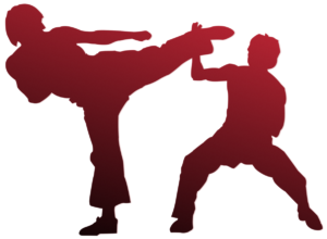 Kung Fu fighters: Pixabay